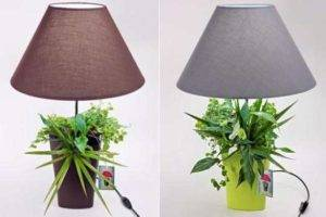 Home Decoration with Enviroment Friendly Lamps for Nature Loving Folks