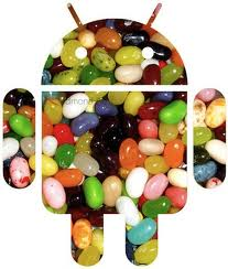 Jelly Bean Will be the Next Version of Android
