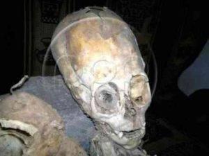 Bones of Alien with Strangely Shaped Head Found in Peru