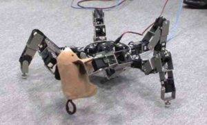 Skillful Omni-Directional Insect Robot Asterisk Makes its Appearance (video)