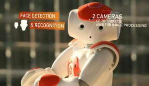 NAO- The French Robot that Practically Does Everything