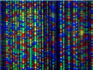 AXN Synthetic DNA