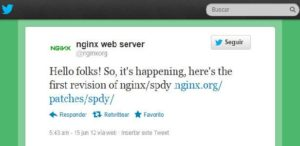 Nginx begins to Bear SPDY 1