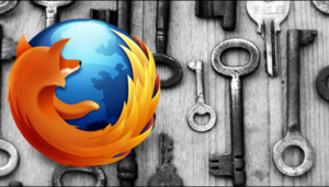 How to Remove the Browser to Remember Passwords 1