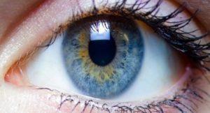 Eye Contact 1
