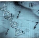Discovered a Gene that Predicts the Time of Death 1