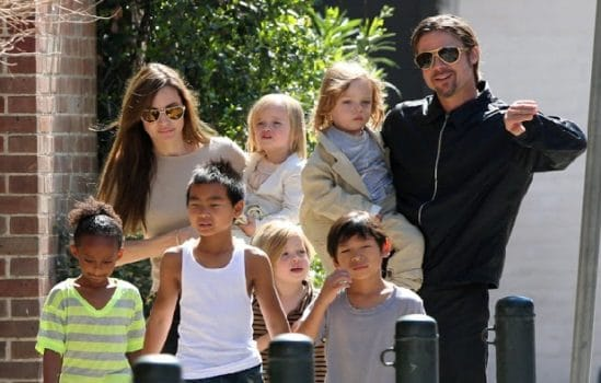 Angelina Jolie and Brad Pitt are Waiting for Seventh Child 8