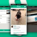 Twitter Launches Video Sharing Application 4