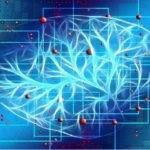 A new approach to AI: astrocytes were hooked up to neurons in 2020 1